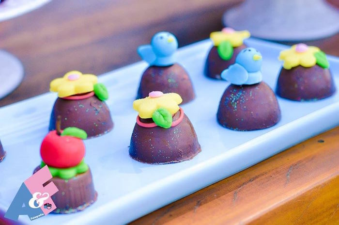 Truffles from a Little Red Riding Hood Birthday Party via Kara's Party Ideas | KarasPartyIdeas.com (42)