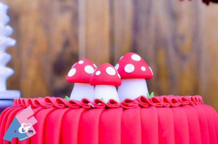 Top of a Cake from a Little Red Riding Hood Birthday Party via Kara's Party Ideas | KarasPartyIdeas.com (26)