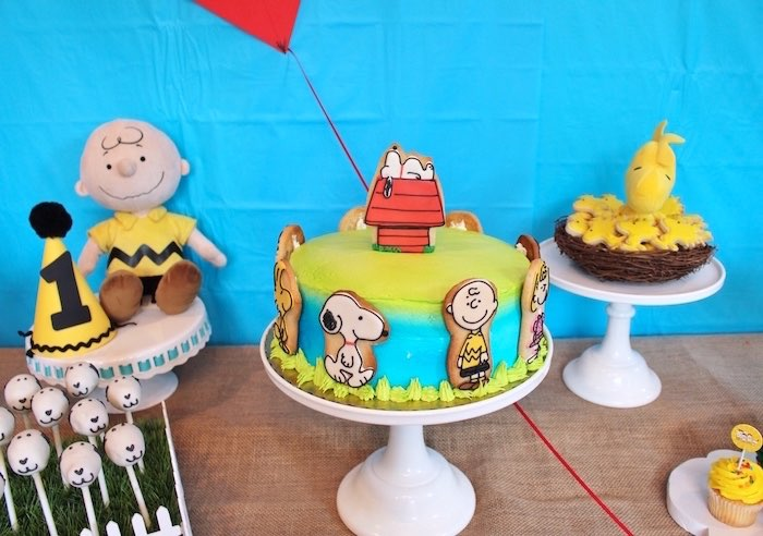 Karas Party Ideas Peanuts Charlie Brown Birthday Party Karas