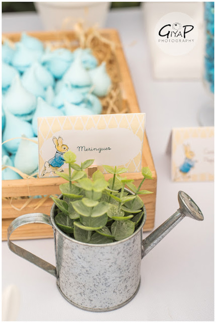 Water Can Planter from a Peter Rabbit Birthday Party via Kara's Party Ideas | KarasPartyIdeas.com (13)
