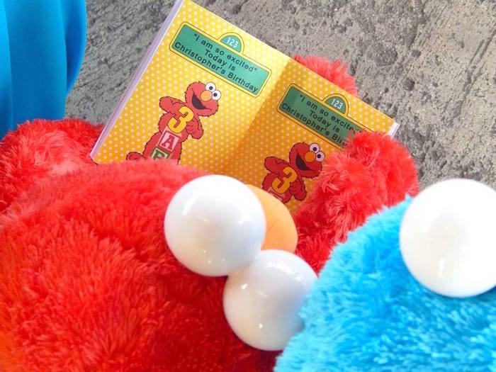 Kara S Party Ideas Rustic Whimsical Sesame Street Birthday