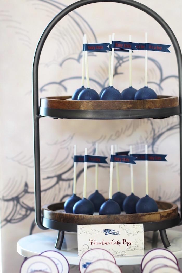 Cake Pops from a Vintage Airplane Baby Shower via Kara's Party Ideas - KarasPartyIdeas.com (31)