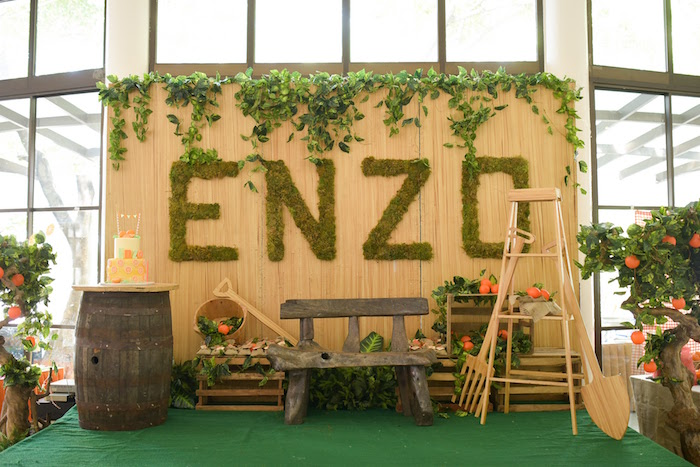Party backdrop/stage from a Citrus Harvest Birthday Party via Kara's Party Ideas! KarasPartyIdeas.com (27)