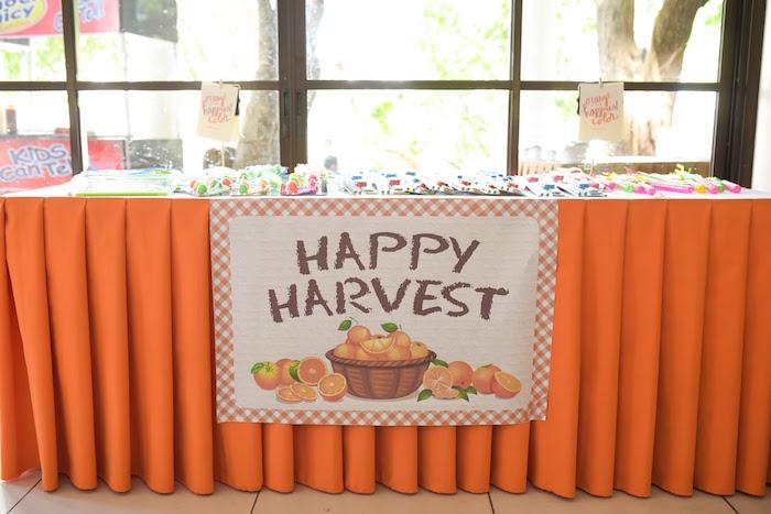 Happy Harvest Table from a Citrus Harvest Birthday Party via Kara's Party Ideas! KarasPartyIdeas.com (21)