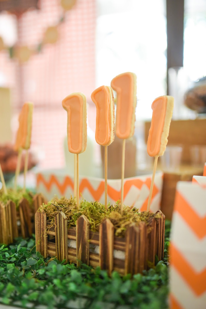 """1"" Cookie pops from a Citrus Harvest Birthday Party via Kara's Party Ideas! KarasPartyIdeas.com (20)"