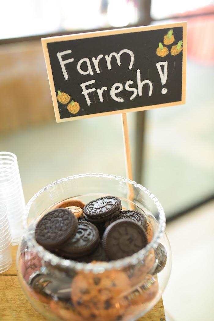 Oreos from a Citrus Harvest Birthday Party via Kara's Party Ideas! KarasPartyIdeas.com (19)