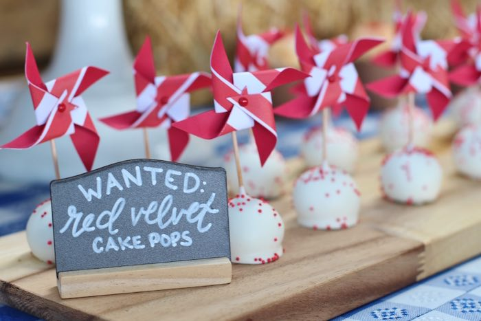 Red velvet pin wheel cake pops from a Cowboy Western Birthday Party via Kara's Party Ideas | KarasPartyIdeas.com (22)
