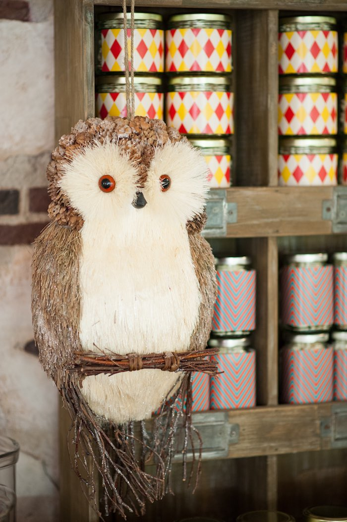 Owl decoration from a Harry Potter Birthday Party via Kara's Party Ideas | KarasPartyIdeas.com (15)