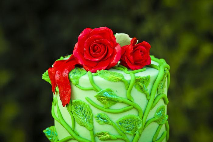 Top of cake from a Poison Ivy Birthday Party via Kara's Party Ideas | KarasPartyIdeas.com (18)