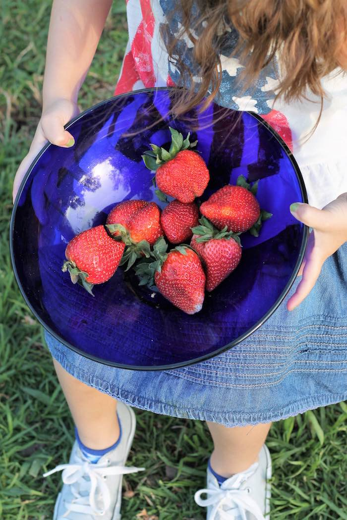Strawberries from a Red + White & Blue Outdoor Summer 4th of July Celebration via Kara's Party Ideas - KarasPartyIdeas.com (66)