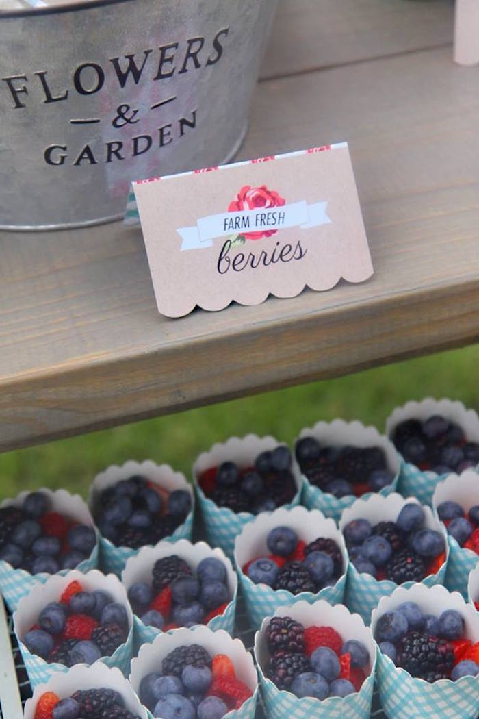 Berry cups from a Shabby Chic Farmers Market Birthday Party via Kara's Party Ideas | KarasPartyIdeas.com - The place for all things PARTY! (33)