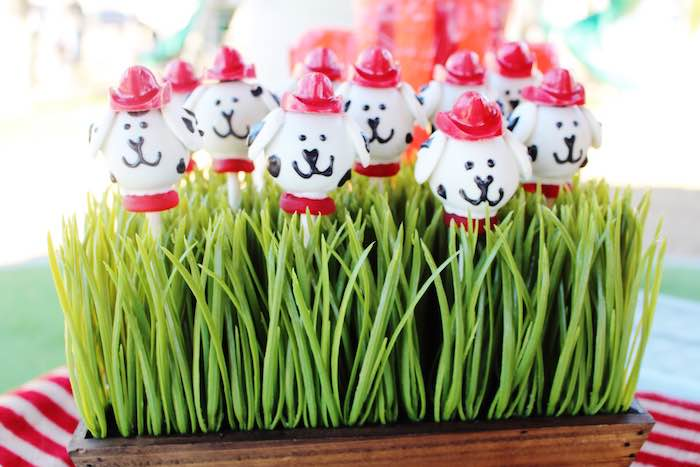 Dalmatian cake pops in grass from a Vintage Fireman Themed Birthday Party via Kara's Party Ideas KarasPartyIdeas.com (24)