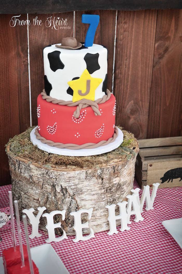 Cowboy cake from a Wild West Cowboy Party via Kara's Party Ideas | KarasPartyIdeas.com - The Place for All Things Party! (9)
