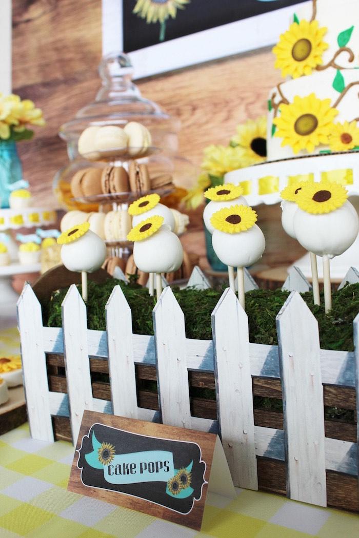 Cake Pops From A Country Fair Graduation Party Via Karas Ideas KarasPartyIdeas
