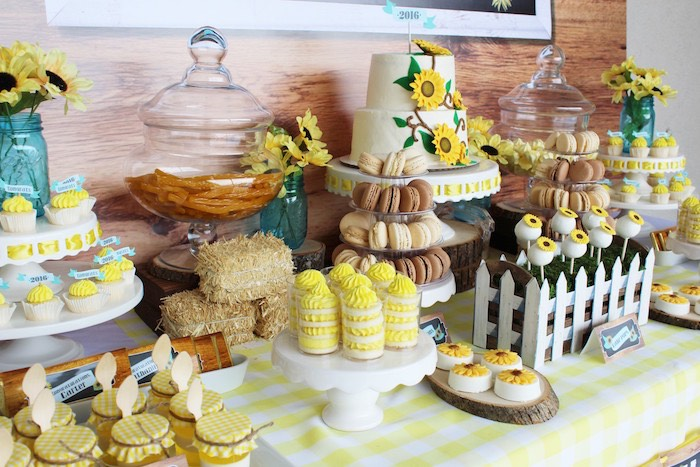 Dessert tablescape from a Country Fair Graduation Party via Kara's Party Ideas KarasPartyIdeas.com (7)