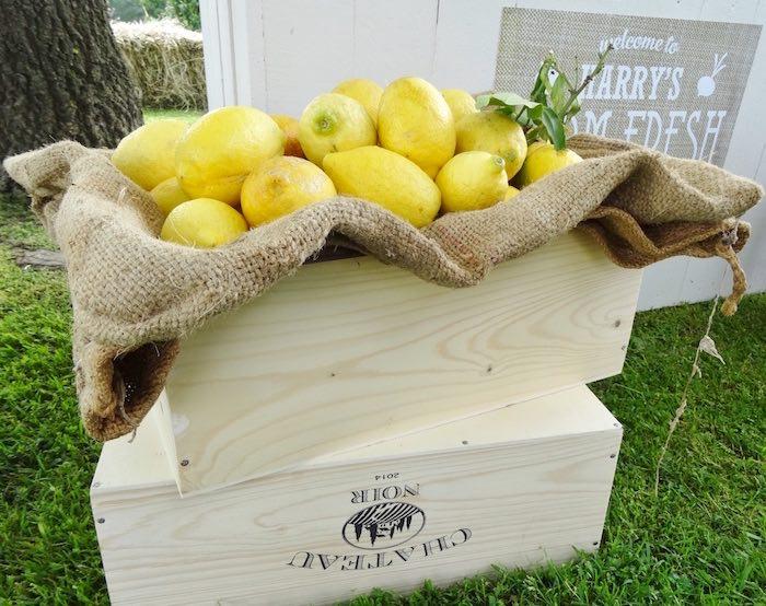 Fresh lemons from a Farm Fresh Birthday Party via Kara's Party Ideas | KarasPartyIdeas.com (21)