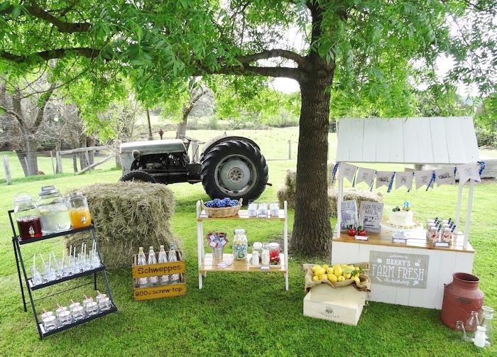 Farm Fresh Birthday Party via Kara's Party Ideas | KarasPartyIdeas.com (18)