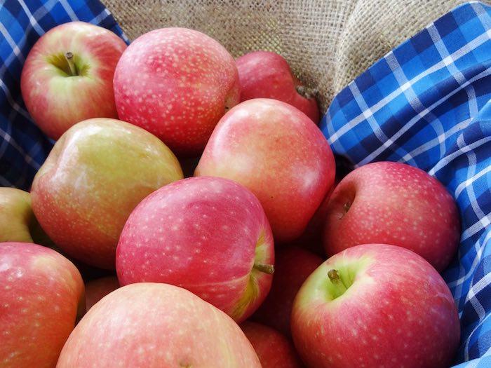 Fresh apples from a Farm Fresh Birthday Party via Kara's Party Ideas | KarasPartyIdeas.com (31)