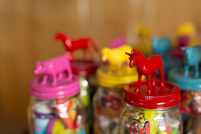 Barnyard animal goodie jars from a Glamorous Barnyard Birthday Bash via Kara's Party Ideas | KarasPartyIdeas.com (22)