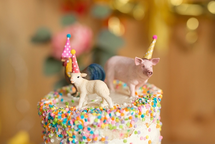 Barnyard birthday cake from a Glamorous Barnyard Birthday Bash via Kara's Party Ideas | KarasPartyIdeas.com (35)