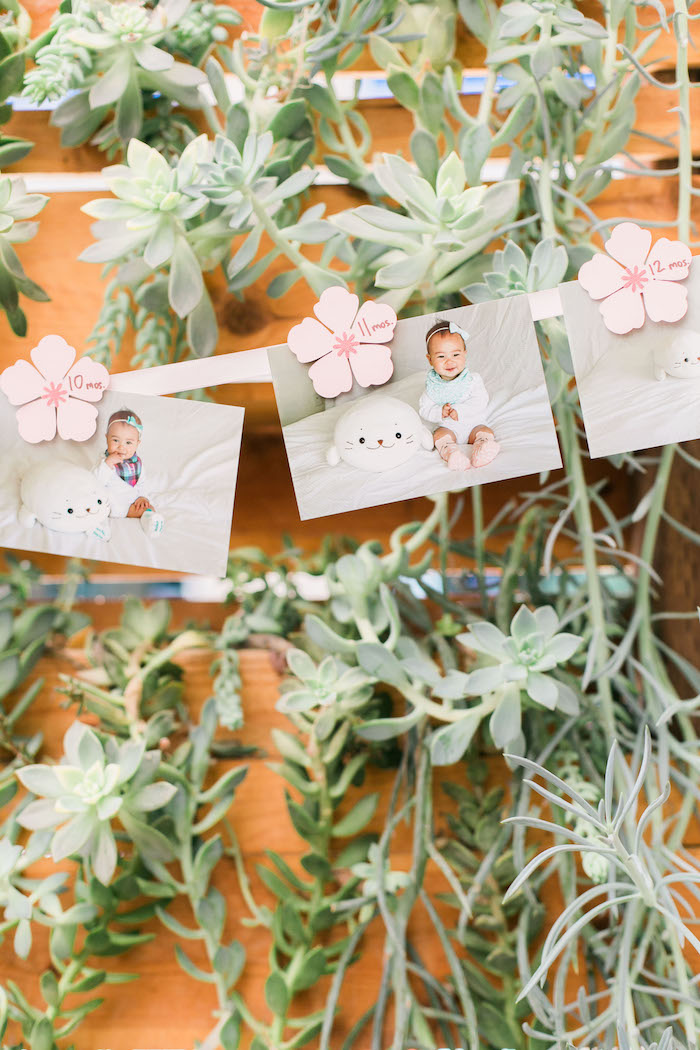 Photo banner surrounded by succulents from a Japanese Cherry Blossom 1st Birthday Dol via Kara's Party Ideas | KarasPartyIdeas.com (21)