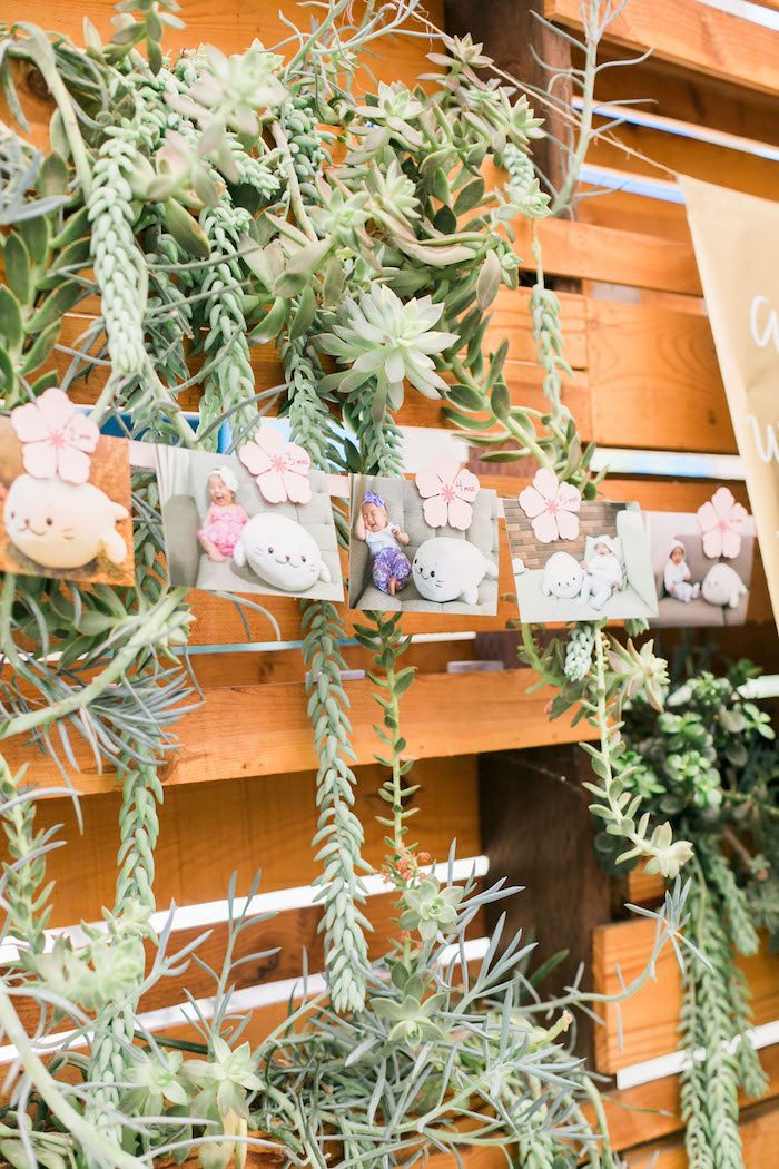 Succulent backdrop from a Japanese Cherry Blossom 1st Birthday Dol via Kara's Party Ideas | KarasPartyIdeas.com (34)