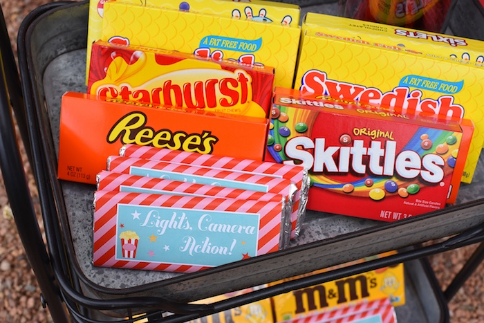 Concession stand candy from a Drive In Movie Night Birthday Party via Kara's Party Ideas | KarasPartyIdeas.com (12)