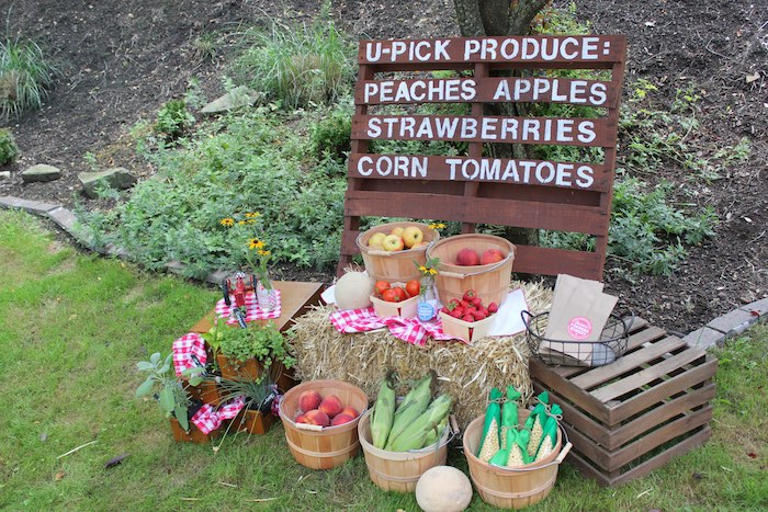 U-Pick Produce Stand from a Farmers Market 1st Birthday Party on Kara's Party Ideas | KarasPartyIdeas.com (33)