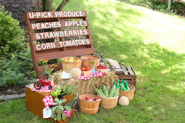 U-Pick Produce Stand from a Farmers Market 1st Birthday Party on Kara's Party Ideas | KarasPartyIdeas.com (30)