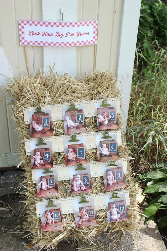 First year straw bale photo banner from a Farmers Market 1st Birthday Party on Kara's Party Ideas | KarasPartyIdeas.com (21)