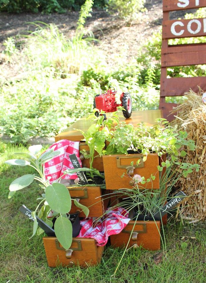 Herb garden from a Farmers Market 1st Birthday Party on Kara's Party Ideas | KarasPartyIdeas.com (11)