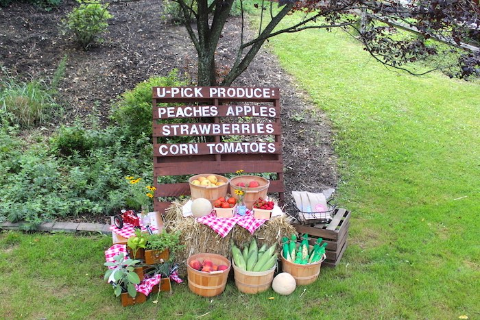 U-Pick Produce Stand from a Farmers Market 1st Birthday Party on Kara's Party Ideas | KarasPartyIdeas.com (45)