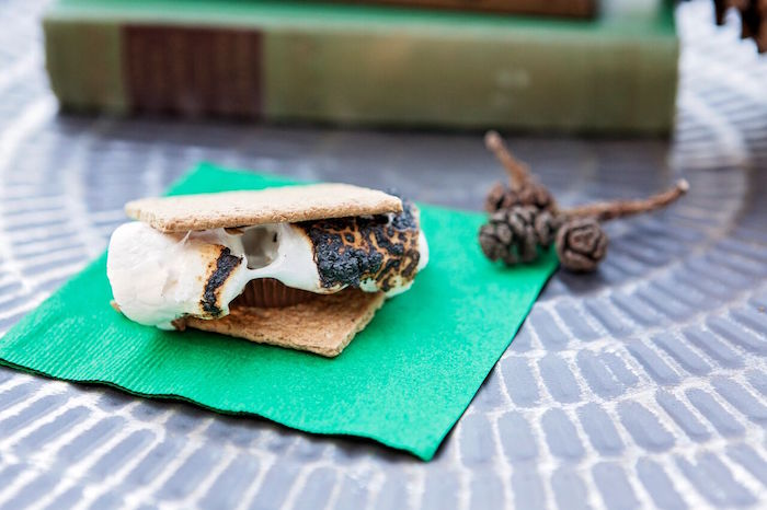 """S'more from a """"Glamping"""" Glamorous Camping Party via Kara's Party Ideas 