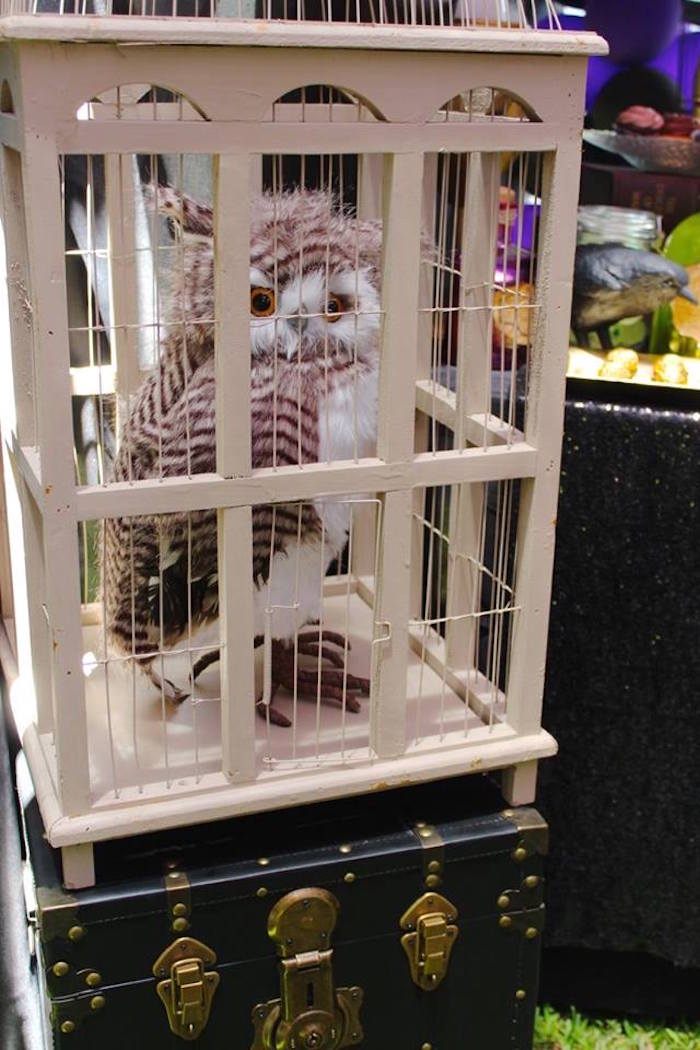 Plush owl in a cage from a Harry Potter Birthday Party via Kara's Party Ideas KarasPartyIdeas.com (55)
