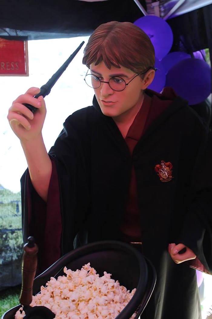 Harry Potter prop from a Harry Potter Birthday Party via Kara's Party Ideas KarasPartyIdeas.com (16)