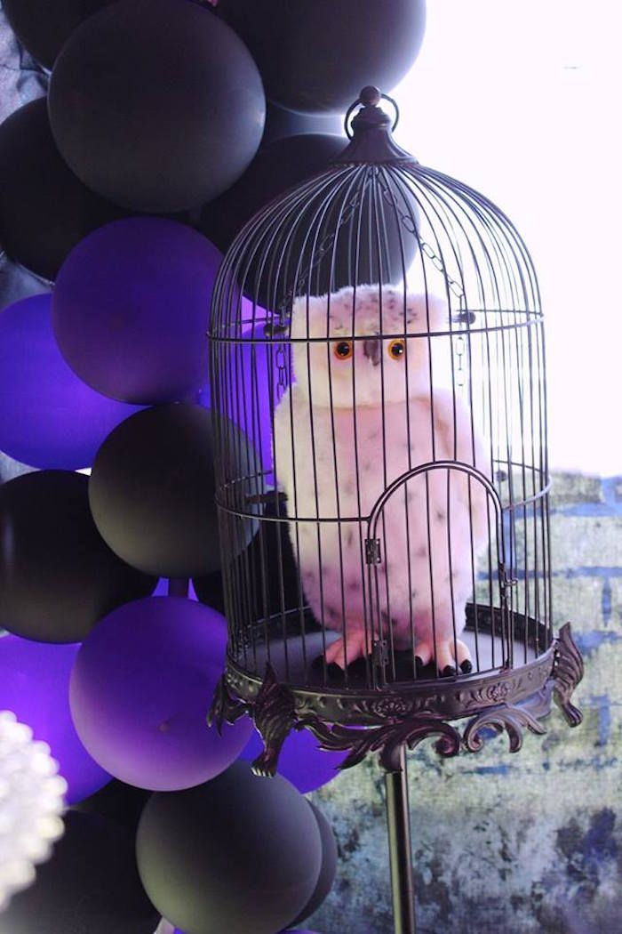 Hedwig in a cage from a Harry Potter Birthday Party via Kara's Party Ideas KarasPartyIdeas.com (52)