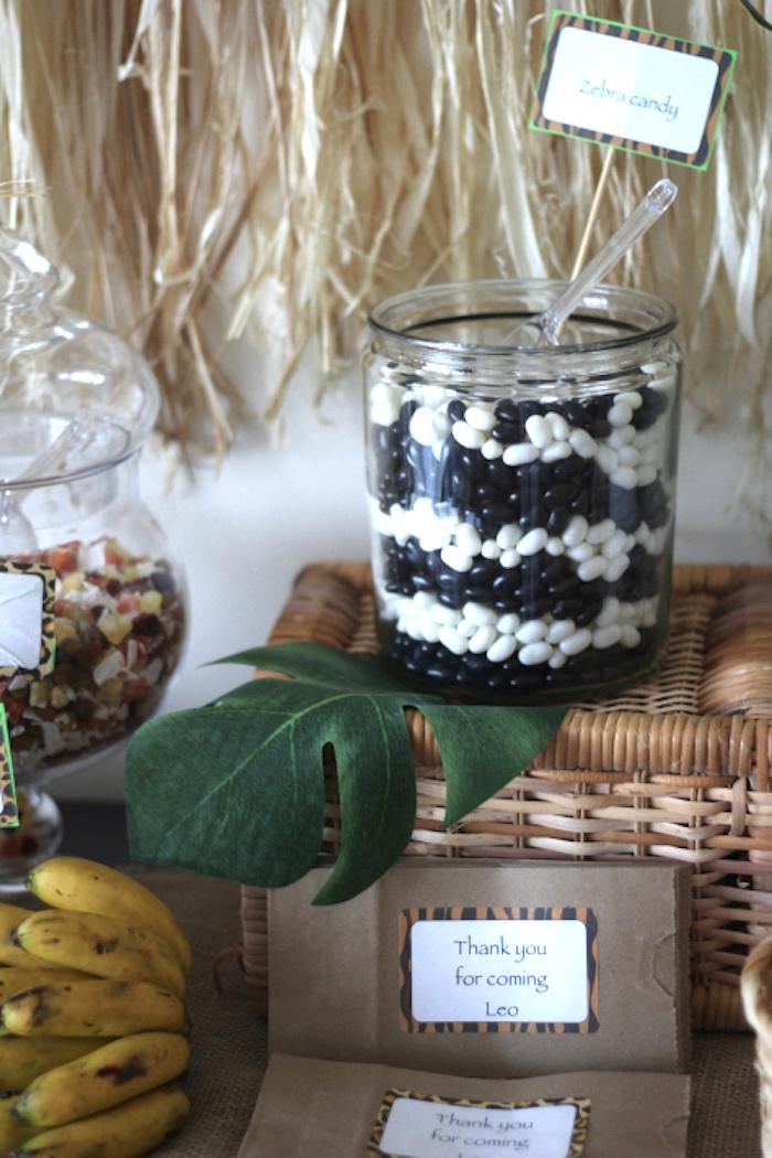 Zebra-inspired, layered jelly bean candy jar from a Jungle Safari Birthday Party via Kara's Party Ideas | KarasPartyIdeas.com (19)