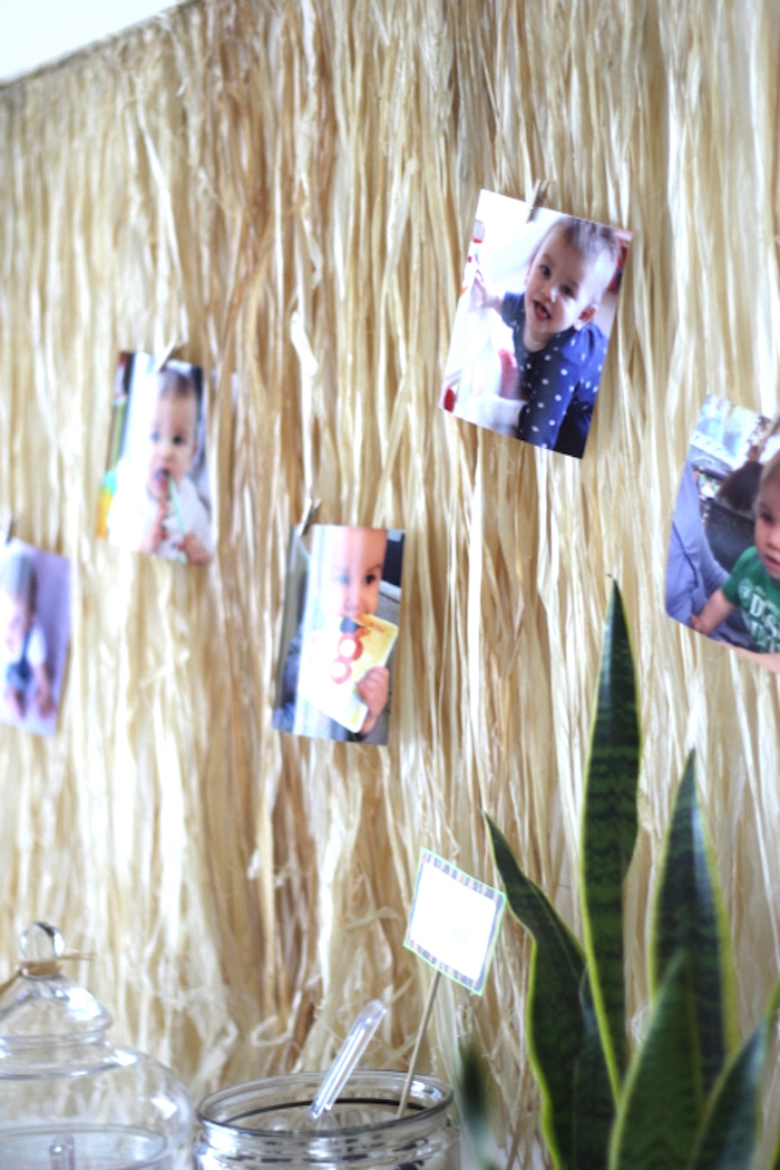 Safari photo wall backdrop from a Jungle Safari Birthday Party via Kara's Party Ideas | KarasPartyIdeas.com (28)