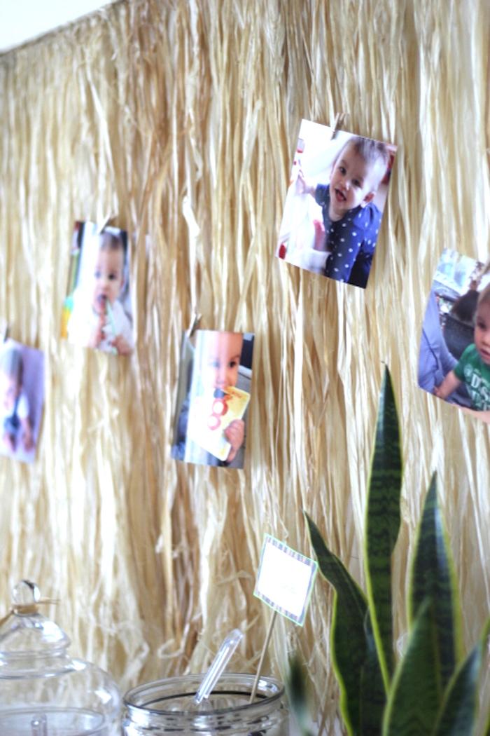 Kara S Party Ideas Mod Jungle Safari Birthday Party Kara