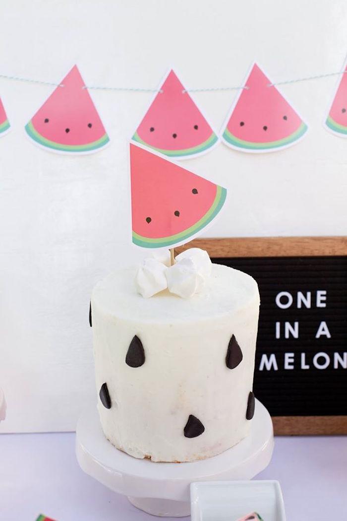 Watermelon themed cake from a One in a Melon Watermelon Birthday Party via Kara's Party Ideas KarasPartyIdeas.com (16)