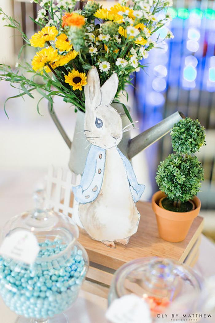 Peter Rabbit Themed 1st Birthday Party on Kara's Party Ideas | KarasPartyIdeas.com (12)