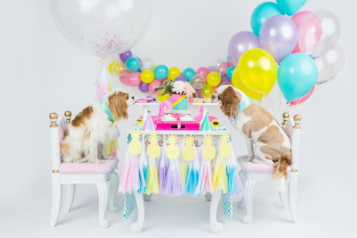 Puppy party spread from a Tropical Pool Party for Puppies on Kara's Party Ideas | KarasPartyIdeas.com (19)