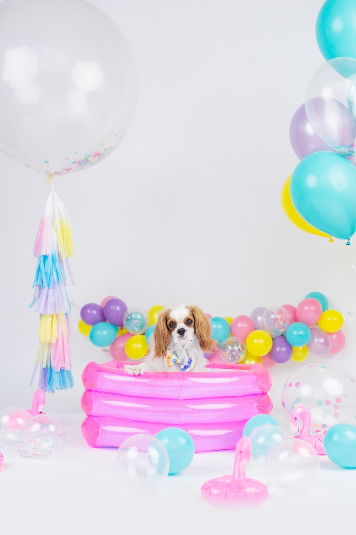 Tropical Pool Party for Puppies on Kara's Party Ideas | KarasPartyIdeas.com (9)