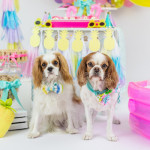 Tropical Pool Party for Puppies on Kara's Party Ideas | KarasPartyIdeas.com (4)