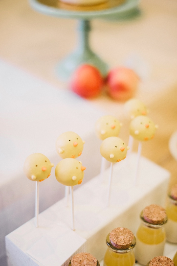 Little chick cake pops from a Little Farm Birthday Party on Kara's Party Ideas | KarasPartyIdeas.com (30)