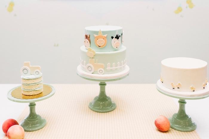Farm cakes from a Little Farm Birthday Party on Kara's Party Ideas   KarasPartyIdeas.com (15)
