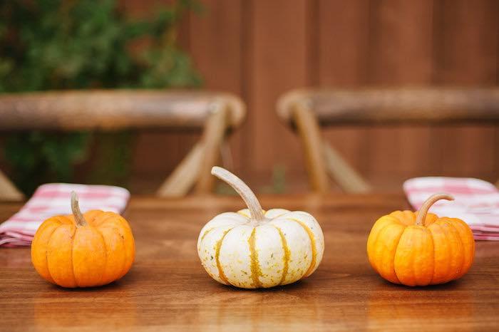"""Little Pumpkin"" Fall Picnic Birthday Party on Kara's Party Ideas | KarasPartyIdeas.com (37)"