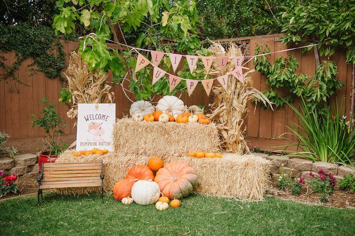 "pumpkin patch photo ideas - Kara s Party Ideas ""Little Pumpkin"" Fall Picnic Birthday"