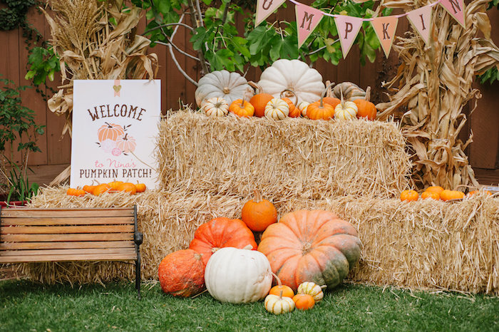 Kara s party ideas quot little pumpkin fall picnic birthday