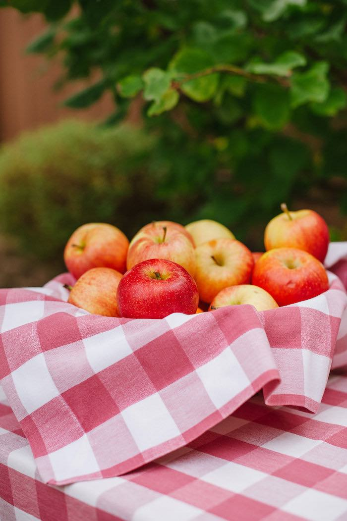 "Apples from a ""Little Pumpkin"" Fall Picnic Birthday Party on Kara's Party Ideas 